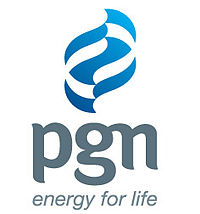 Logo_PGN_new_lowres